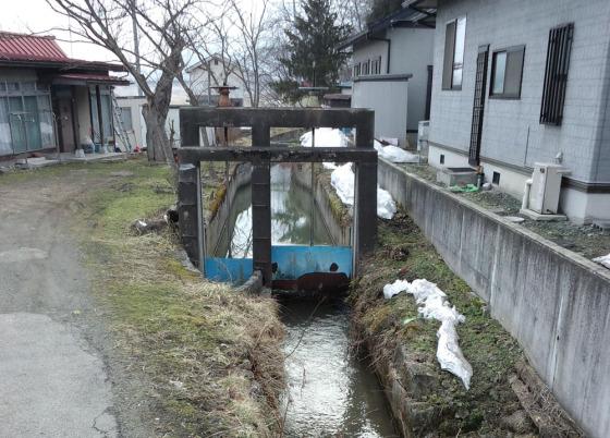 自宅前を流れる横内堰(右)、和田堰(左)の分水水門
